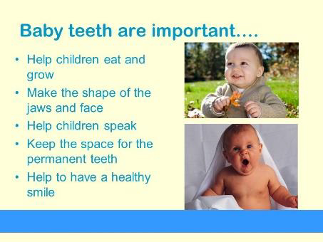 Important roles of baby teeth